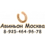 Компания Авиньон-Москва