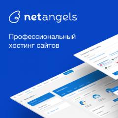 Крупнейший хостинг-провайдер России NetAngels