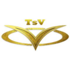 TSV дорожные сумки на колесах